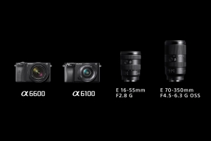 Sony announces new APS-C sensor cameras a6600, a6100 and two APS-C lenses E 16-55mm f/2.8 G and E 70-350mm G OSS